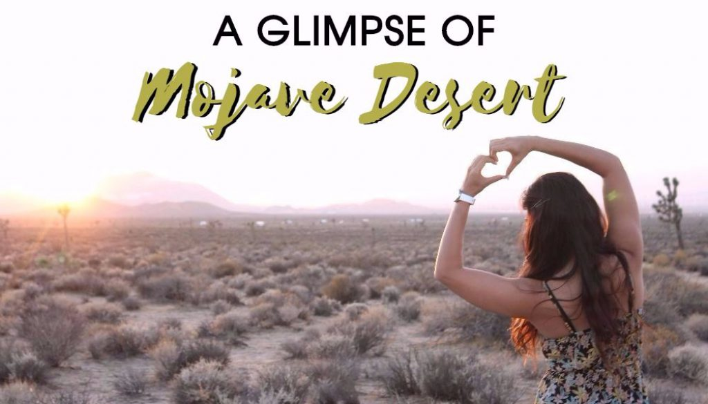 A glimpse of Mojave Desert