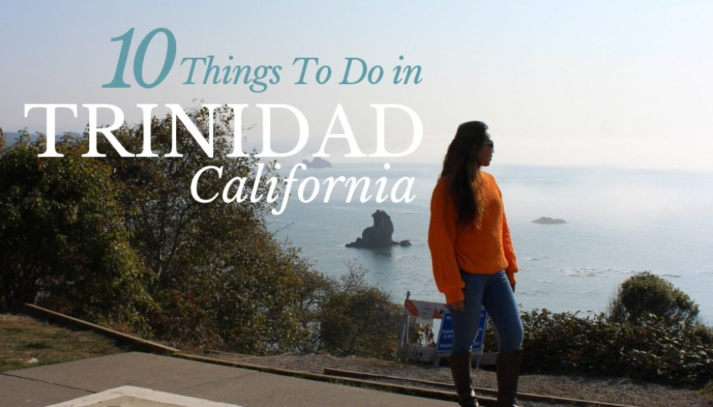10 THINGS TO DO IN TRINIDAD CA