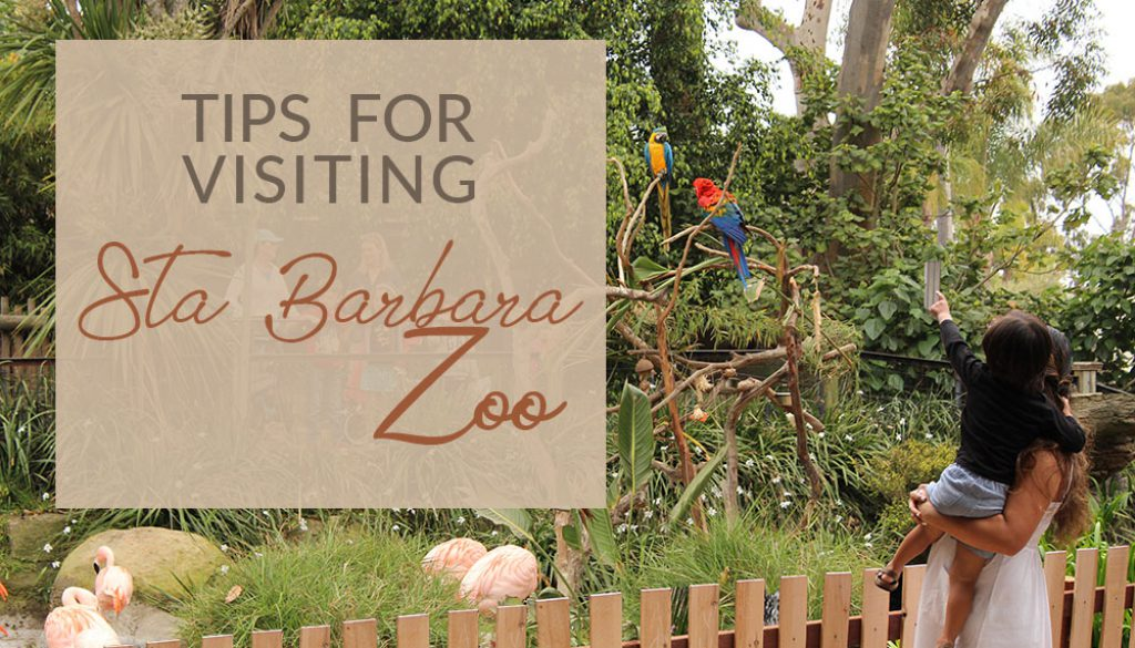TIPS FOR VISITING STA BARBARA ZOO